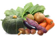 野菜コーディネーター養成講座